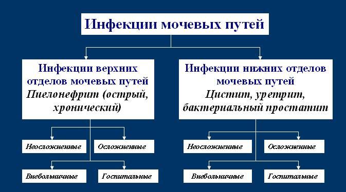 Классификация инфекционных поражений