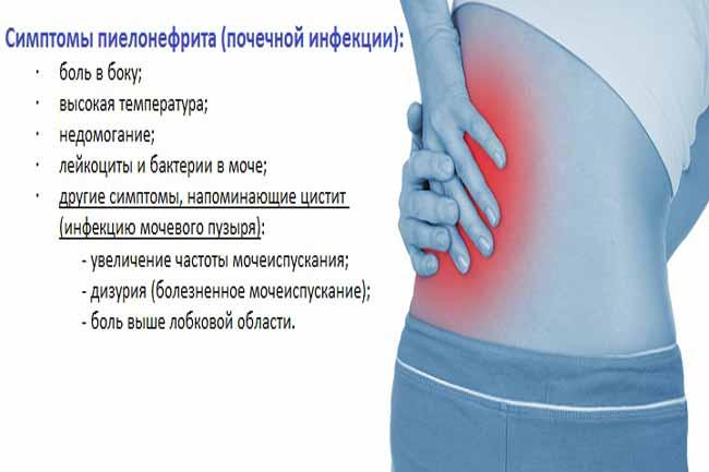 Лечение пиелонефрита в домашних условиях народными средствами